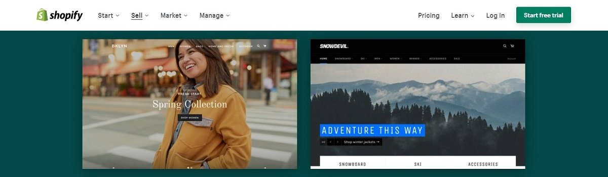 shopify ecommerce store website themes